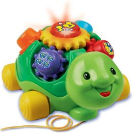 Roll & Learn Turtle