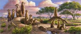 Adorable Meerkats - 200 piece puzzle