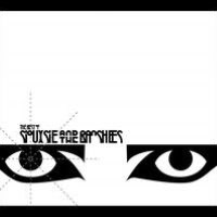 The Best of Siouxsie and the Banshees [2-CD]
