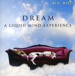 Dream: A Liquid Mind Experience