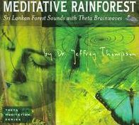 Meditative Rainforest