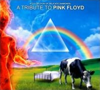 Collection of Delicate Diamonds: A Tribute To Pink Floyd