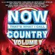 CD Cover Image. Title: Now That's What I Call Country, Vol. 7, Artist: