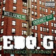 Intelligence And Ignorance