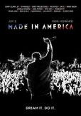 Video/DVD. Title: Made in America