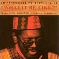 What Would It Be Like?: Ed Blackwell Project, Vol. 2