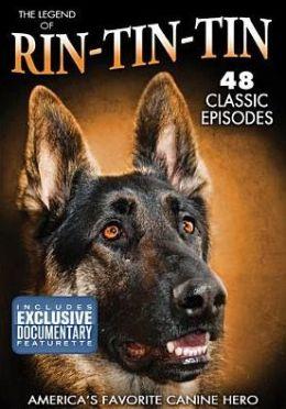 Rin Tin Tin: Americas Canine Hero
