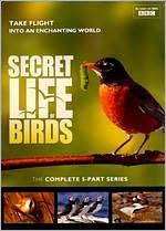 Secret Life Of Birds: 5 Part Series