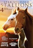 Video/DVD. Title: Star-Studded Stallions: 4 Movie Collection