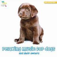 Relaxing Music for Dogs and Their Owners