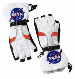 Astronaut Gloves - Large