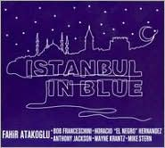 Istanbul in Blue