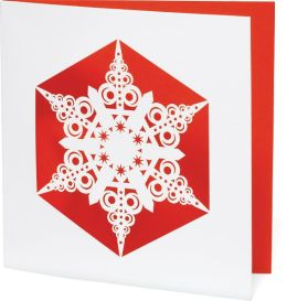 DELICATE SNOWFLAKE CHRISTMAS BOXED CARD