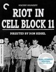 Video/DVD. Title: Riot in Cell Block 11