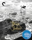 Video/DVD. Title: The Black Stallion