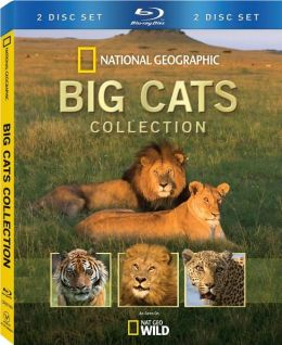 Big Cats Collection (2pc) / (Ws Ac3 Dol)