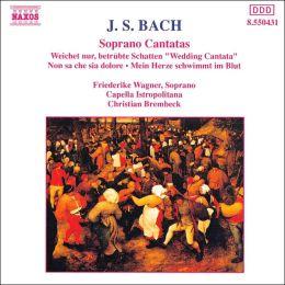 J.S. Bach: Soprano Cantatas