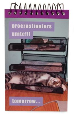 I Can Has Cheezburger Note Pad Procrastinators Unite! Cat