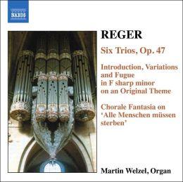 Organ Works 6