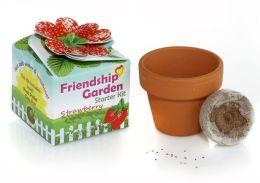 Friendship Garden Starter Kit Strawberry