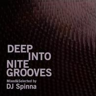 Deep Into Nite Grooves: Mixed & Selected By DJ Spinna