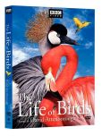 Video/DVD. Title: Life of Birds