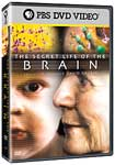 Secret Life of the Brain