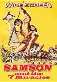 Video/DVD. Title: Samson & The 7 Miracles