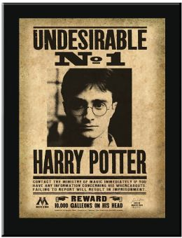 Harry Potter Undesirable No.1 Sign Wall Plaque