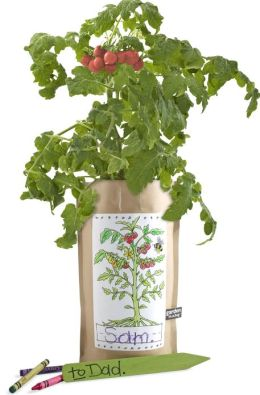 Tomato Kids Indoor Personalized Garden in a Bag