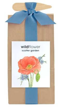 Wildflower Scatter Garden in Bag