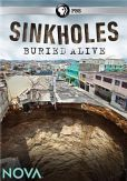 Video/DVD. Title: NOVA: Sinkholes - Buried Alive