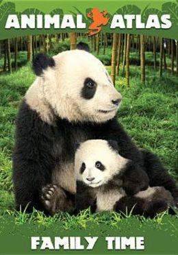 Animal Atlas: Family Time