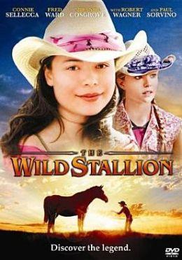 The Wild Stallion