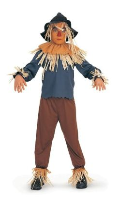 The Wizard of Oz  Scarecrow  Child Costume: Size Medium