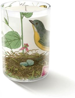 ''Paris Nest'' Small glass Candle