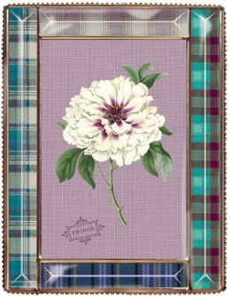 Plaid Border Beveled Glass Frame (4 x 6)