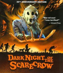 The Dark Night of the Scarecrow