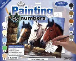 Junior Large Paint By Number Kit 15-1/4