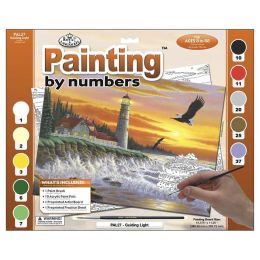 Adult Paint By Number Kit 15-3/8