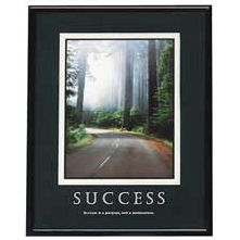 Advantus Corp. AVT78004 Success Poster- 24in.x30in.- Black Frame