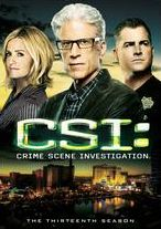 Csi: Crime Scene Investigation - the Thirteenth Season