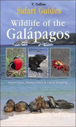 Safari Guide: Galapagos