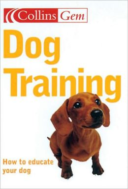 Dog Training: How to educate your dog