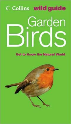 Garden Birds: Get to Know the Natural World