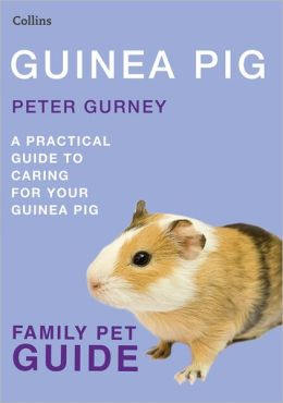 Guinea Pig: A Practical Guide to Caring for Your Guinea Pig