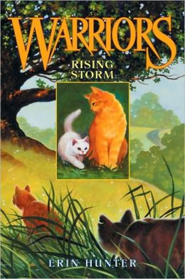 Rising Storm (Warriors Series #4)