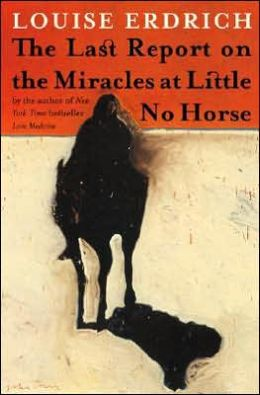 Wednesday Bookgroup: The Last Report on the Miracles at Little No Horse