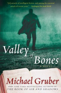 Valley of Bones: A Novel