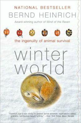 Winter World